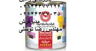 خرید عمده رنگ روغنی نیم براق شرکت رنگسازی ایران